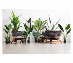 Afbeelding van product: WOOOD Aloë vera kunstplant groen, div afmetingen H46x B14x D14cm