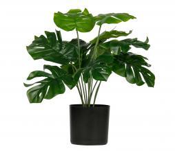 Afbeelding van product: WOOOD Monstera kunstplant 40 cm groen