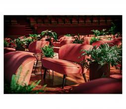 Afbeelding van product: WOOOD Sara fauteuil velvet oudroze