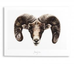 Afbeelding van product: Selected by Aries kunstposter 30x40 cm