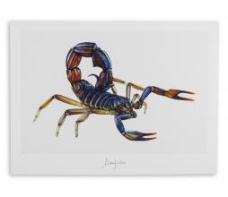 Afbeelding van product: Selected by Scorpio kunstposter 30x40 cm