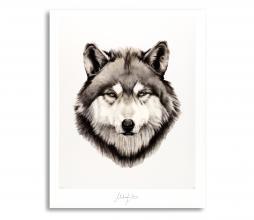 Afbeelding van product: Selected by Wisdom kunstposter 30x40 cm