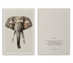 Afbeelding van product: Selected by Bond Elephant kunstkaart A5 formaat