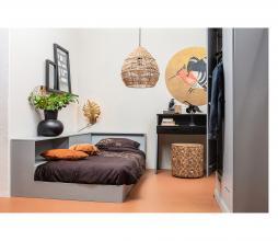 Afbeelding van product: WOOOD Fenix behangcirkel ø100 cm goud