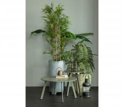 Afbeelding van product: WOOOD Fer bijzettafel Ø40 cm metaal jungle
