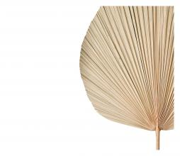 Afbeelding van product: Selected by Plantae ornament 40x54 cm naturel