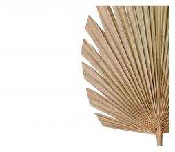 Afbeelding van product: Selected by Plantae ornament 44x103 cm naturel