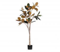 Afbeelding van product: WOOOD Rubber kunstplant 170cm groen/bruin